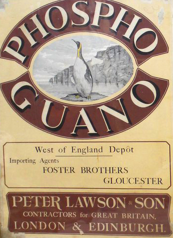1860 Gloucester Guano Poster