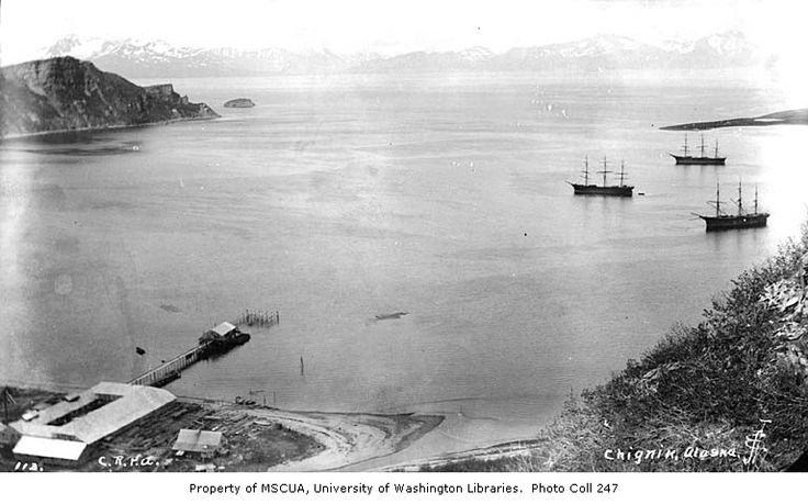 Alaska Packers Cannery at Chignik Bay 1902